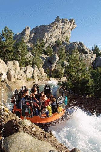 disneyland california adventure rides. in Disney#39;s California