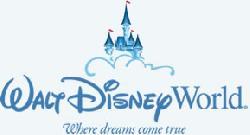 Walt Disney World Pins image