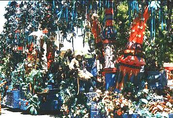 Lion King Parade picture of a jungle scene